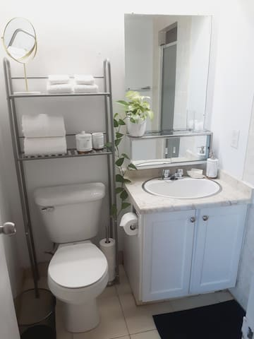Ensuite Bathroon with Shower (light switch outside walk-in closet)