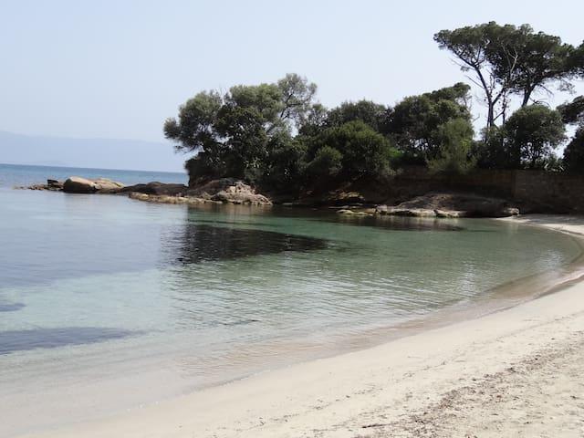 F3 de 60 m² - plage de Marinella