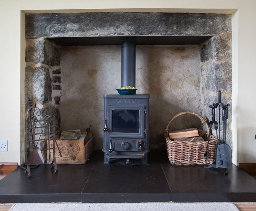Wood burner in living room