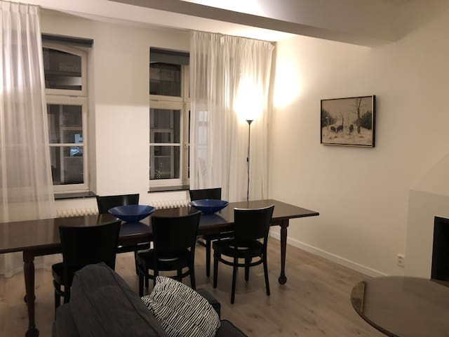 Just renovated cosy appartment in city center