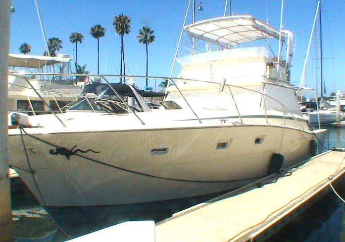Seayalater in Sunroad Marina.