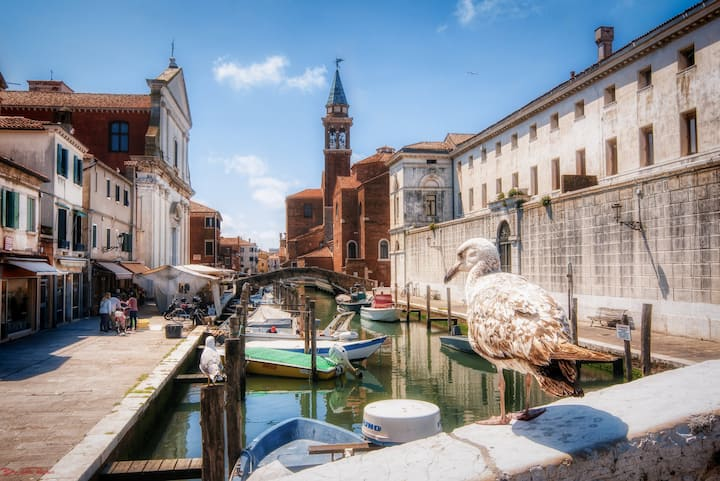 Leo's Dream House - Casa Vacanze Chioggia Ve