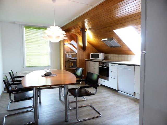 Wohnung 1 1/2 Zimmer Dachgeschoss - Menziken - Daire