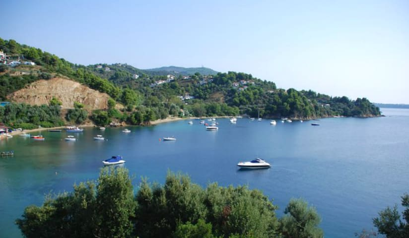APARTMENT 3 MINUTES FROM THE BEACH TZANERIA!  1 - Skiathos - Apartment