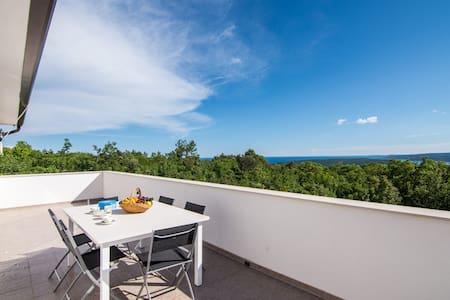 Gregor Villas -villa with astonishing view - Raša