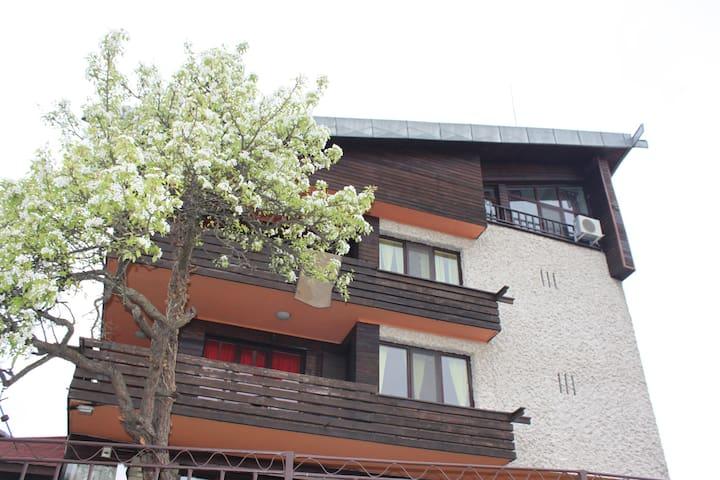 Daskalov Guest House - Chervena lokva - บ้าน