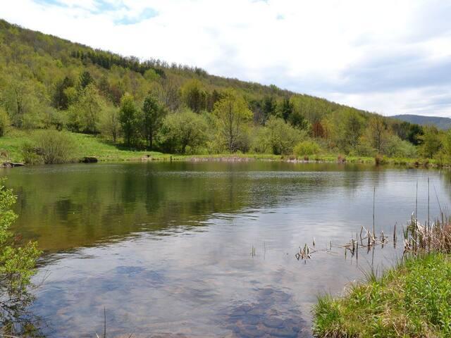 Catskill Mountain Top Retreat