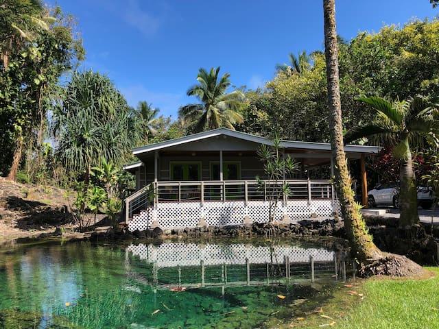 "Wai 'Olena - ""Healing Ponds""    (locals only)"