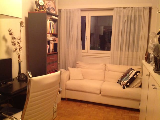 Room 1 pers big bed /desk/Wifi/park - Versoix - Apartment