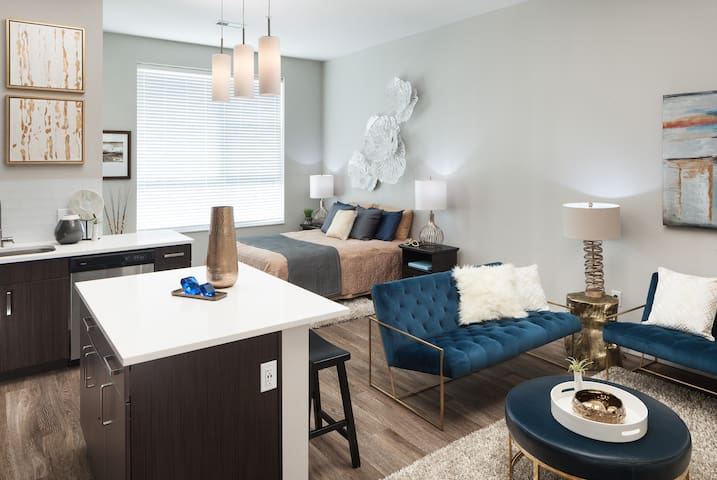 Upscale Studio Apartment in Cherry Creek