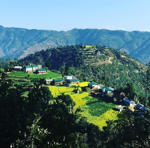 Lama Land Organic Farm and Home Stay