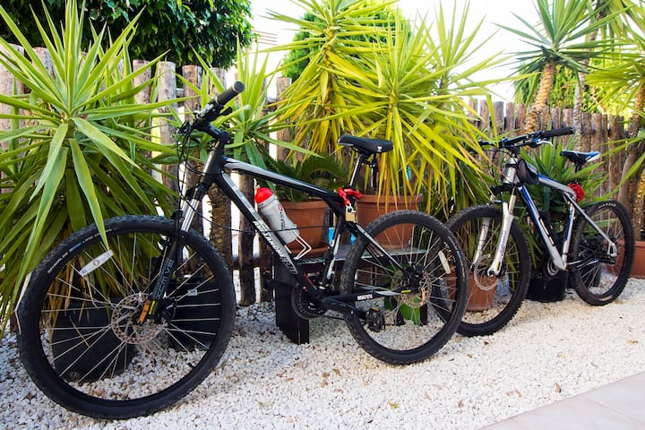 Two professional mountain bikes, free of charge....:)