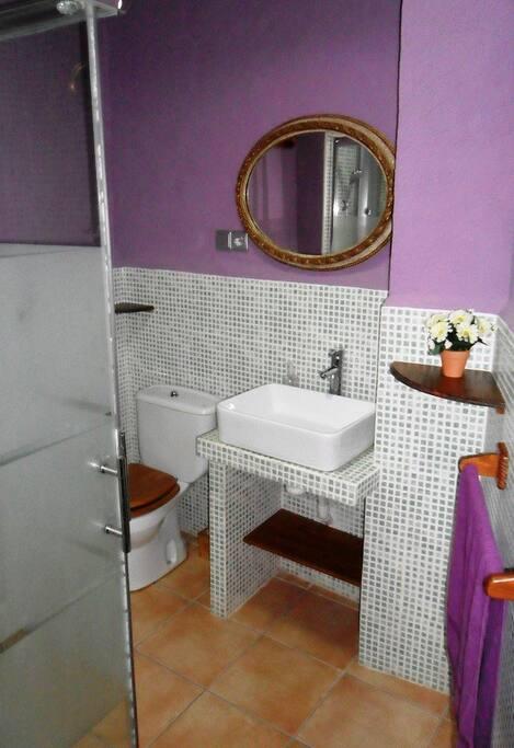Baño casa abajo