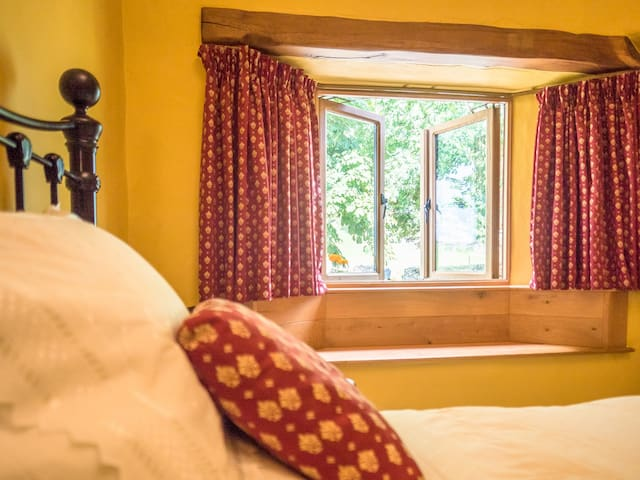 The window view from the bed