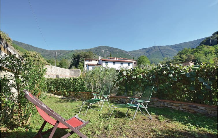 Semi-Detached with 4 bedrooms on 180 m² in Calci (PI)