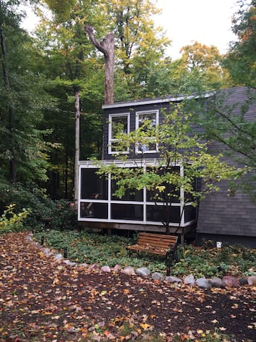 Charming cottage in woods! - South Haven - House