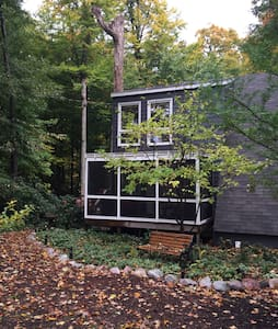 Charming cottage in woods! - South Haven - Casa