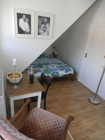 Praha 4 - piecefull but very close to the city - Prague - Loft