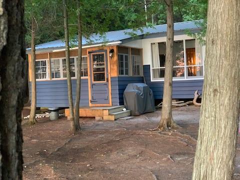 Campamento Lake Temiscamingue Driftwood