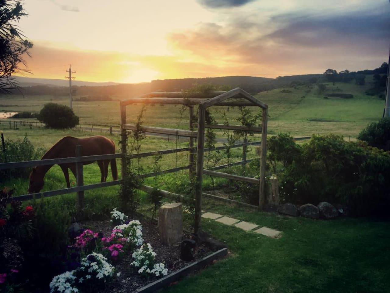 Sunset from verandah