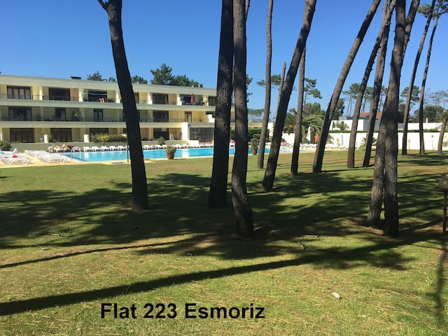 Apartment for beach and nature lovers, near Porto