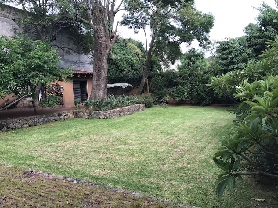 Jardín posterior y hortaliza