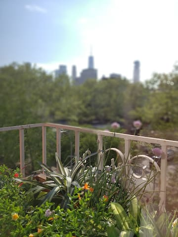 Great views of NYC landmarks such as the Freedom Tower from every window