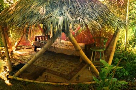 Camping at the Gypsy House - Rincón - Zelt