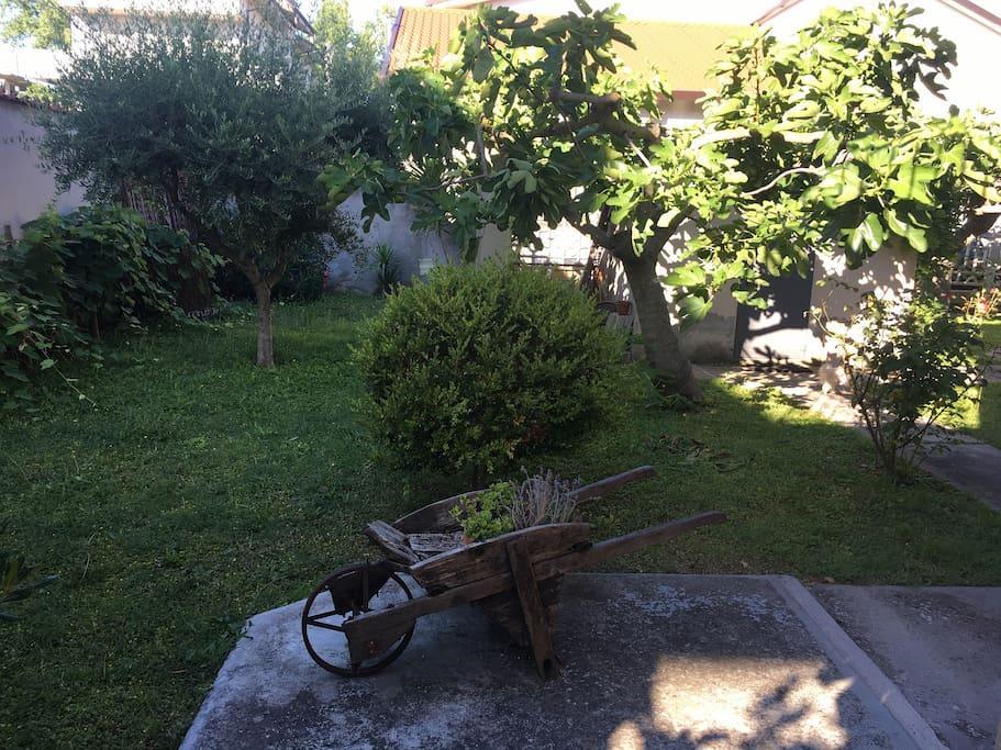 Vista di una parte del giardino/Garden View