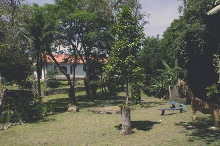 Sítio Paraíso - Piraí