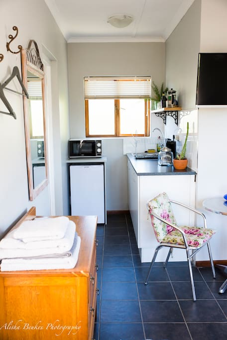 Kitchenette with mikrowave and coffee plunger