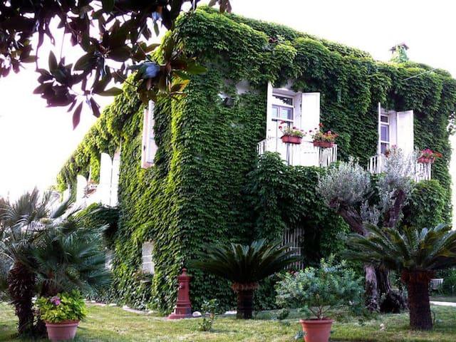 Mini Countryside Apartment