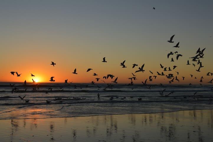 beautiful sunsets every day