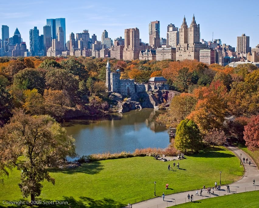 Central Park is right behind the guesthouse