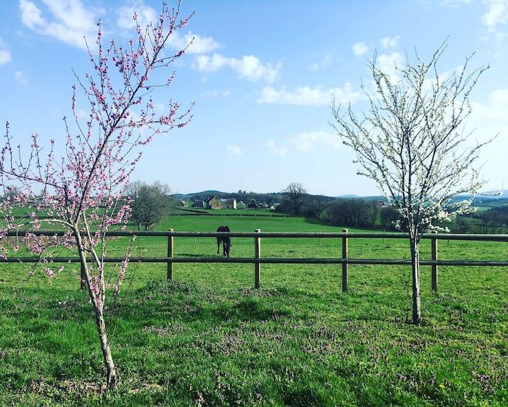 Gîte Repos et Nature : bienvenue chez vous !