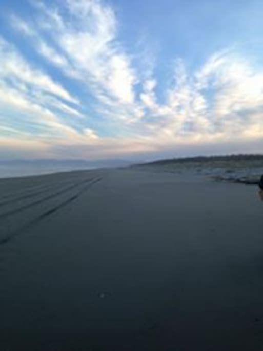 Pines Beach. Wonderful to walk on in all weather. Riding on the beach can be arranged.