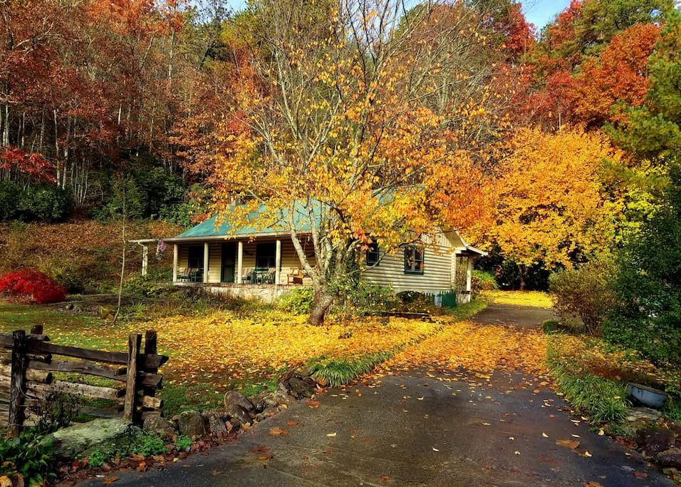 Betty's Creek Cabin Late Fall