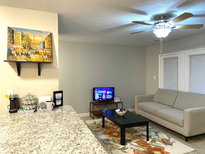 Temp/Corporate Stay-Downtown Raleigh access to RTP
