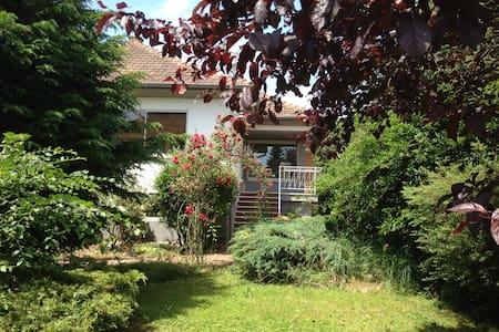 Maison de vacances au vert en Alsace - Hus