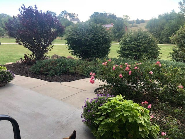Front porch view. Listen to the birds, not the sound of traffic!