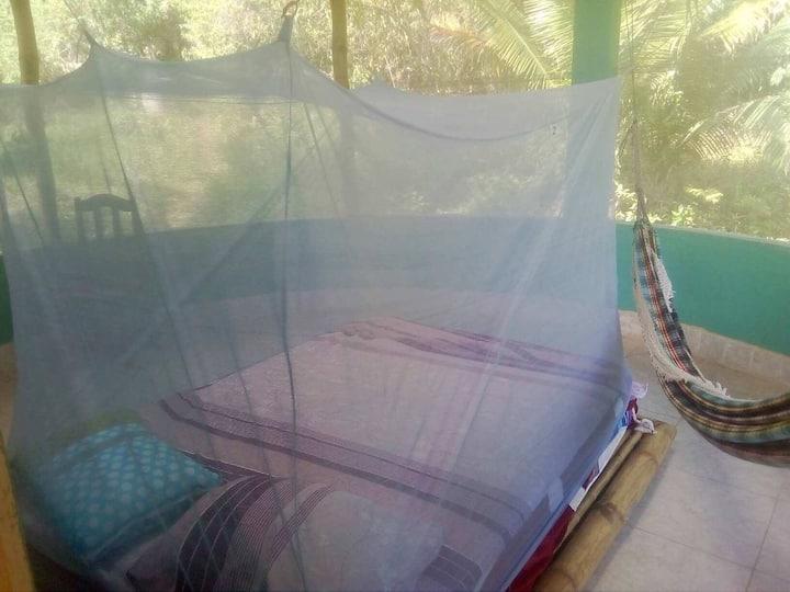 Zen 8 shaped solar home in gorgeous surroundings