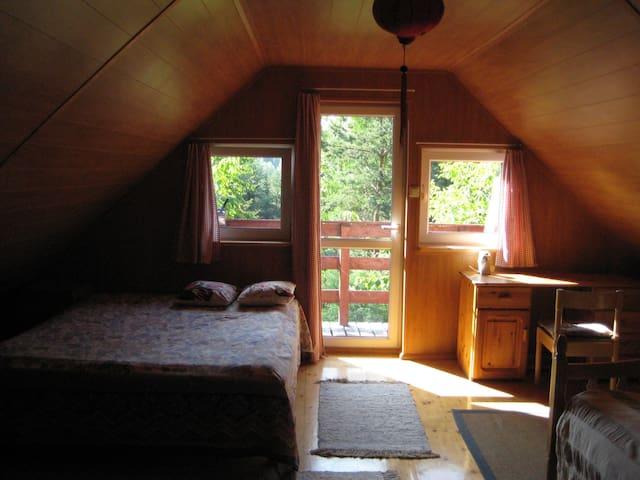 Ein  ruhiges Haus am See in  Kaszubien, im Wald. - Gołubie - Maison