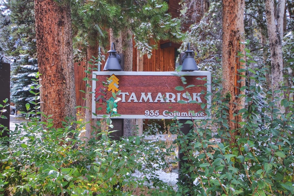 Welcome to Tamarisk