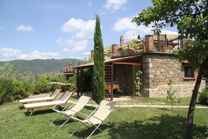 Toscana classica: pace,  relax, cultura e ... vini