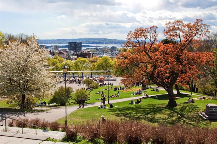 Food Scene, Drinks & Nightlife in Oslo