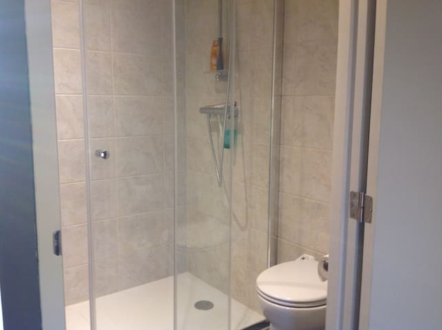 shower with toilet