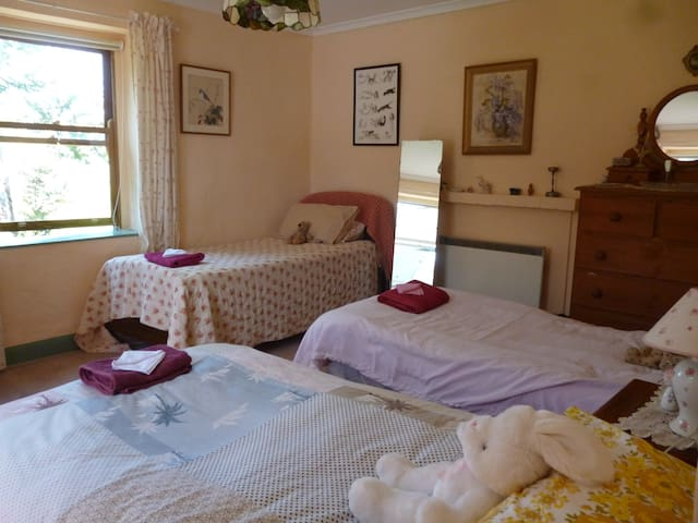 The Top Bedroom - Three single beds and a cot - Also a Porta-cot and extra foam mattress available.