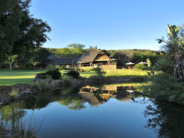 Kaingo Private Game Reserve - Vaalwater - Autre