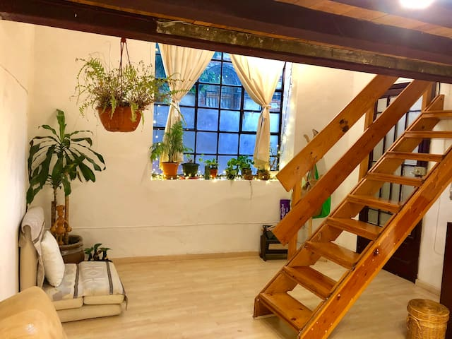 San Miguel Loft