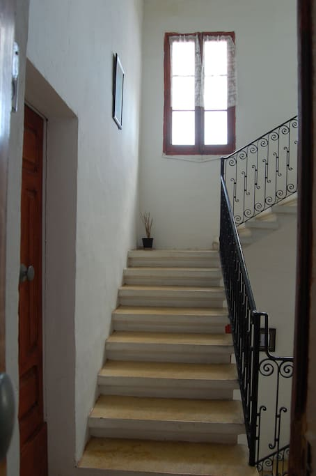 Stair case leading up